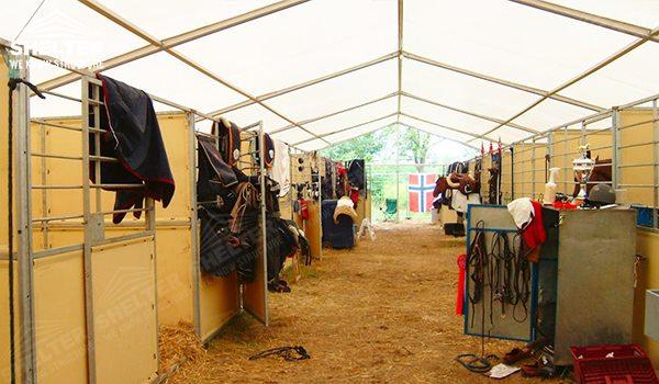Carpa de venta para cr a y entrenamiento de caballos for Criadero de carpas